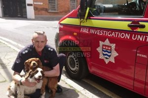 Fire Investigator's retirement means end of service for Roscoe and Murphy